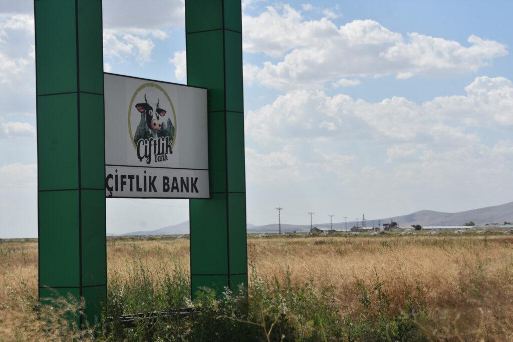 ciftlik bank magdurlari ne yapmali, çiftlik bank mağdurları ne olacak, çiftlik bank mağdurları paralarını alabilecek mi, çiftlik bank mağdurları paralarını aldı mı, çiftlik bank mağdurlarına ödeme yapılacak mı, çiftlik bank mağdurlarına devlet ödeme yapacak mı,